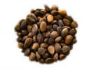 Pine Nuts 200 g