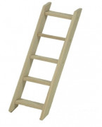 Ladder for Frogs