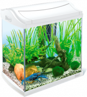 Tetra AquaArt Crayfish Aquarium Complete Set White Wit