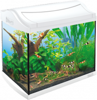 Tetra AquaArt Shrimps Aquarium Complete Set  20 l Wit