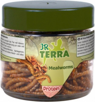 Protein Mealworms 20 g