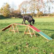 Dog Activity Agility Kattenloop