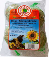 Wild Bird Summer Fat Balls with Insects 4 pcs   från Rosenlöcher köp billiga på nätet