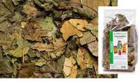 Hugro Rodent Dream Walnut Leaves 80 g