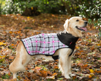 Scruffs Thermal Dog Coat EAN: 5060319938260 reviews