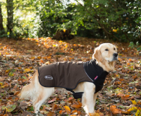 Scruffs Thermal Dog Coat Dark brown L buy online