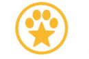 StarMark Frisbees pour chiens