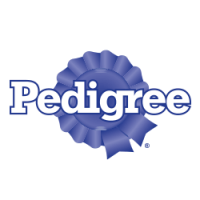 Pedigree Senior Lamb & Poultry in Pate