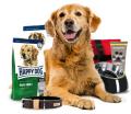 Hondenspeelballen - Ontdek zelf de geweldige service en prijzen van Zoobio