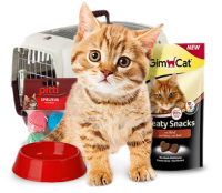 All for your Cats buy online