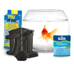 Nourriture pour poissons et accessoires pour aquariums pour Boutique d'aquariophilie achetez en ligne à des prix intéressants
