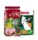 Encontre aqui as Ofertas em Papagaios