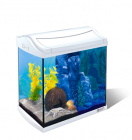 Aquariums sans armoires