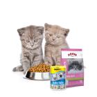Encontre aqui as Ofertas em Ração para gatinhos