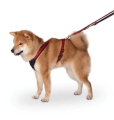Find here actual Deals for Harnesses