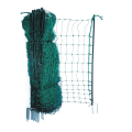 Window protective nets for cats