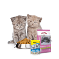 Dry food for kittens