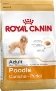 Royal Canin Breed Health Nutrition Poodle Adult 1.5 kg i djurbutik