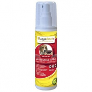 Bogaclean Bogaclean Ambient Spray 150 ml