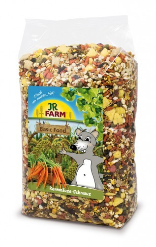 JR Farm Gerbils Feast 600 g 4024344136818