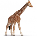 Schleich Giraffe  til de bedste priser