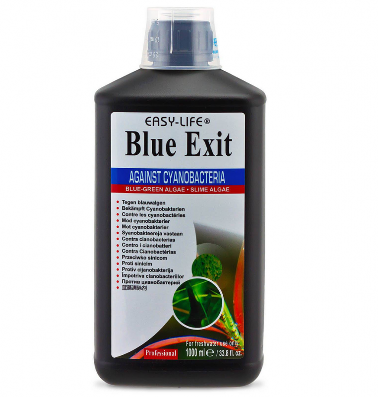 Easy-Life Blue Exit 1 l  buy online