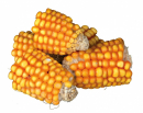 Pieces of Maize Cobs - EAN: 4011905602899