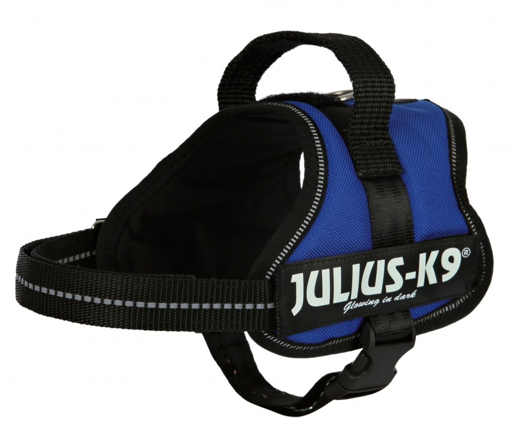 Julius K9 Powersele Mini Mini S: 40-53 cm, röd  Blå S