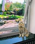 Protector de ventanas  Trixie Rejilla de protección para ventanas