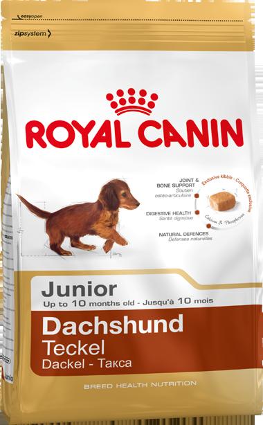 Royal Canin Breed Health Nutrition Dachshund Junior 1.5 kg
