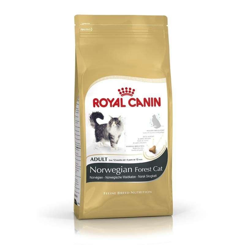 Royal Canin Feline Breed Nutrition - Norwegian Forest Cat Adult 10 kg, 2 kg, 400 g kjøp billig med rabatt