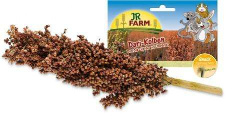 Dari Cob Rodents by JR Farm 100 g buy online