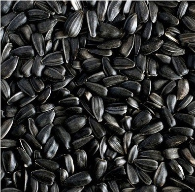 Ruvo Zonnebloempitten zwart 25 kg  met korting aantrekkelijk en goedkoop kopen