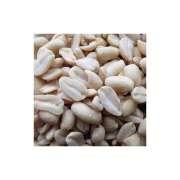 Erdnussbruch weiss blanchiert Art.-Nr.: 14183