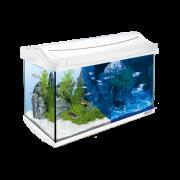 AquaArt LED Set completo 60L blanco Tetra  Instrumentos multiusos para acuarios   a bajo precio. ¡Consigue descuentos ahora!