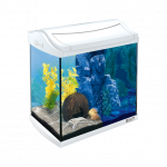 Tetra AquaArt LED Aquarium 30 L Crayfish weiß Top Qualität zum fairen Preis