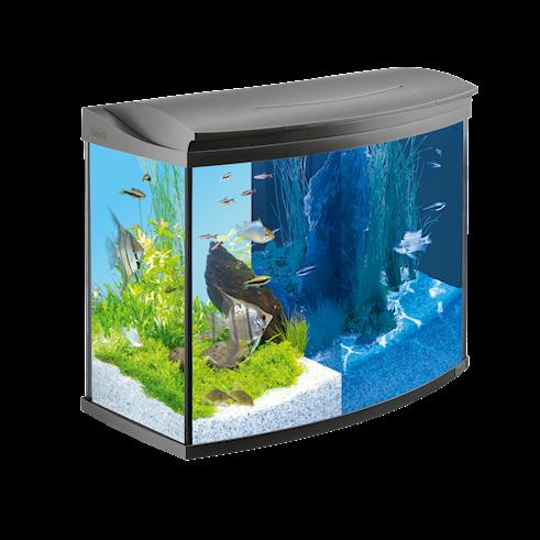 Fische & Aquarien Aquarien Tetra Aquaart Led Aquarium 60l
