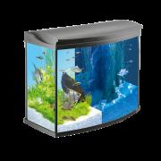 Commandez en ligne Tetra Lot Aquarium complet AquaArt Evolution Line LED  - Aquarium sans armoire