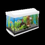Tetra AquaArt Aquarium-Komplett-Set 60L weiß Top Qualität zum fairen Preis