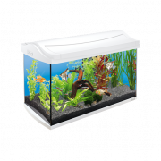 Lot Aquarium Complet AquaArt Blanc - EAN: 4004218211926