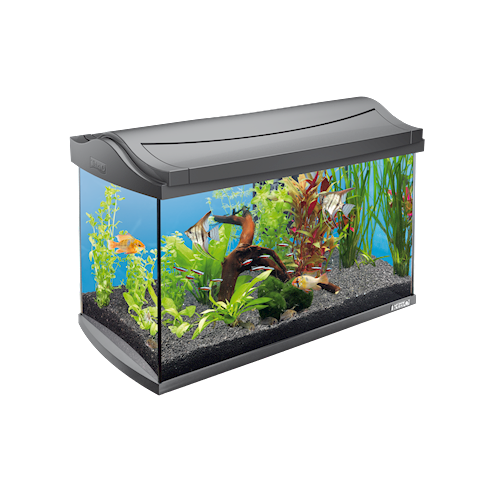Tetra AquaArt Aquarium Compleet Set Wit 4004218211926
