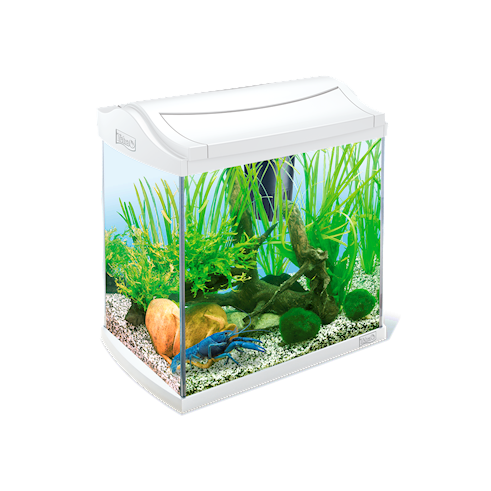Tetra AquaArt Aquarium Complete Set Shrimps  30 l Wit