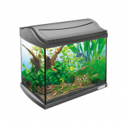 AquaArt Lot Aquarium Complet Crayfish