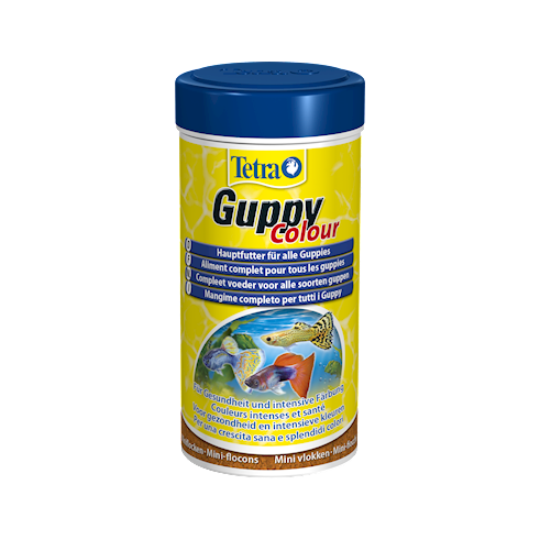 Tetra Guppy Colour 250 ml