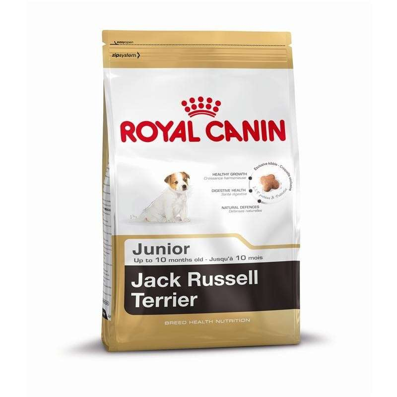 Royal Canin Breed Health Nutrition Jack Russell Terrier Junior 3182550822121 kokemuksia