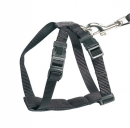 Safety seat belt 10 mm - EAN: 4047059172452