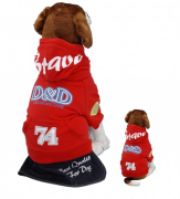 Pullover D&D Dog Fashion Brave - Flame Red M