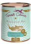 Terra Canis Menu sans Céréales, Cabillaud avec Broccoli, Fenouil et Mangue 800 g