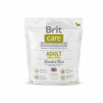 Brit Care Adult Small Breed Lammasta & Riisiä 1 kg
