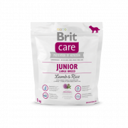 Care Large Breed Junior Lammasta & Riisiä 1 kg